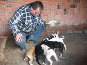 Dies ist die Geschichte von Mehmet & seinen Hunden ...